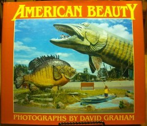 American Beauty (A New Images Book): Graham, David