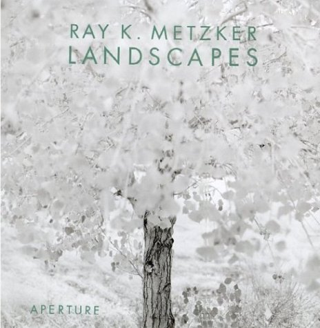 9780893819118: Ray K. Metzker: Landscapes