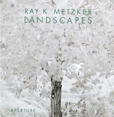 Ray K. Metzker: Landscapes: Turner, Evan H.