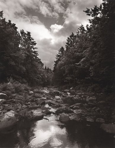 To Save a River: Dickerson, Scott; Shultz, Dennis C.