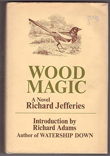 9780893881771: Wood Magic