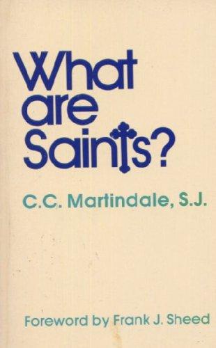 9780894532702: What Are Saints? Fourteen Studies in Sanctity