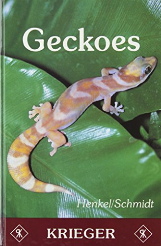 Geckoes: Biology, Husbandry, and Reproduction: Friedrich-Wilhelm Henkel; Wolfgang Schmidt