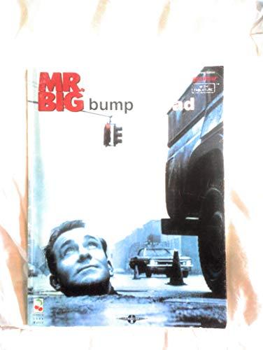 9780895248091: Mr. Big-Bump Ahead