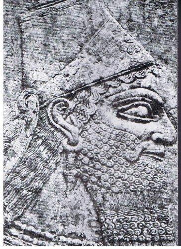 9780895640086: The Essene Book of Asha: Journey to the Cosmic Ocean