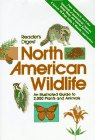 9780895771025: Reader's Digest North American Wildlife