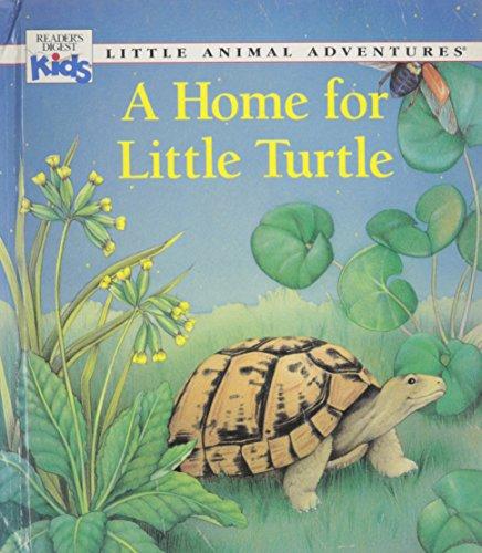 A Home for Little Turtle (Little Animal: Chottin, Ariane; Kovacs,