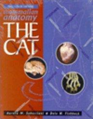 Mammalian Anatomy: The Cat: Sebastiani, Aurora M.