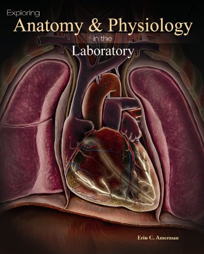 Exploring Anatomy & Physiology in the Laboratory: Amerman, Erin C.
