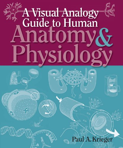 9780895828019: A Visual Analogy Guide to Human Anatomy & Physiology