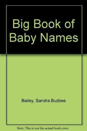 9780895861917: Big Book of Baby Names