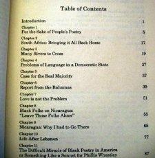 9780896082694: On Call: Political Essays