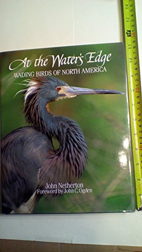 Water's Edge: Wading Birds of North America (0896582337) by Netherton, John