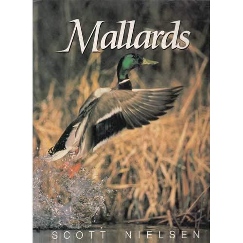 Mallards: Scott Nielsen