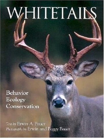9780896583085: Whitetails: Behavior Ecology Conservation