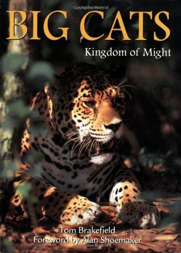 9780896583290: Big Cats (Wildlife)