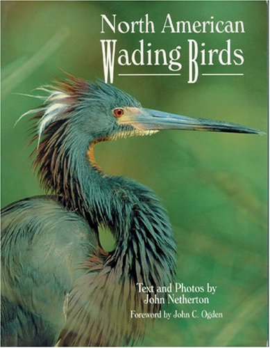 9780896584020: North American Wading Birds (Wildlife)