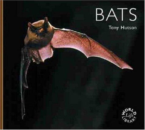 9780896585003: Bats (WLL)