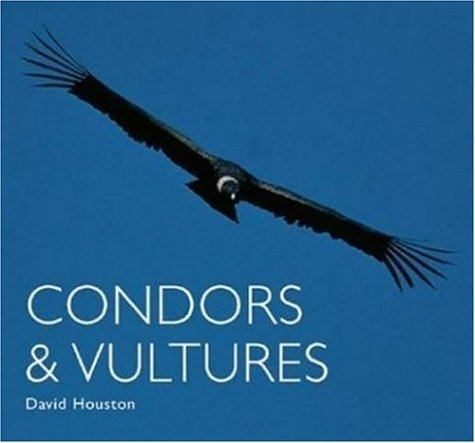 9780896585232: Condors and Vultures