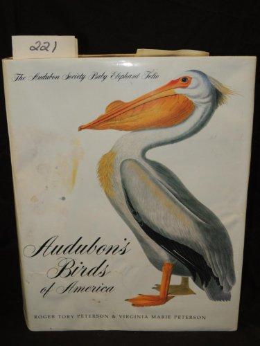 9780896593367: Audubon's Birds of America: The Audubon Society Baby Elephant Folio