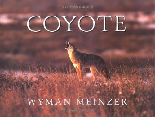9780896723528: Coyote