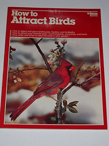 How to Attract Birds: Michael McKinley