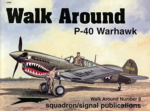 9780897473613: P-40 Warhawk - Walk Around No. 8