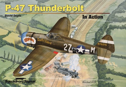 9780897477482: P-47 Thunderbolt in Action (50208)