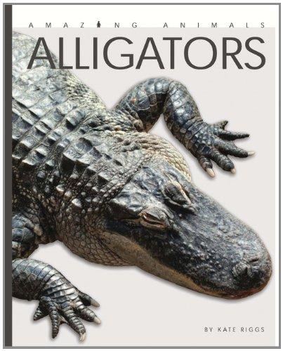9780898126891: Amazing Animals: Alligators