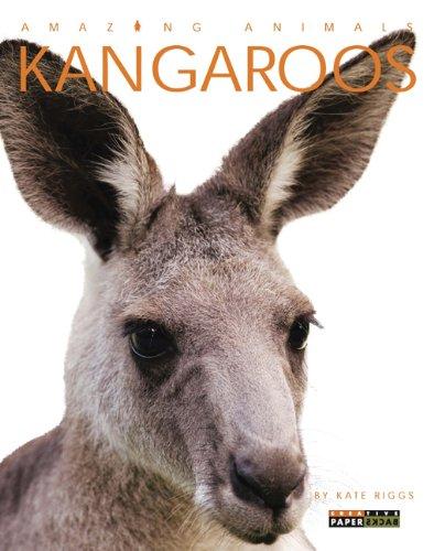 Kangaroos: Riggs, Kate