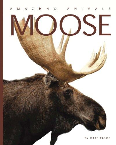 9780898126969: Amazing Animals: Moose