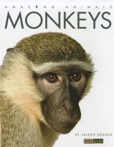 9780898127423: Amazing Animals: Monkeys