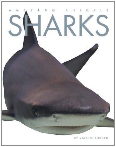 9780898127447: Amazing Animals: Sharks