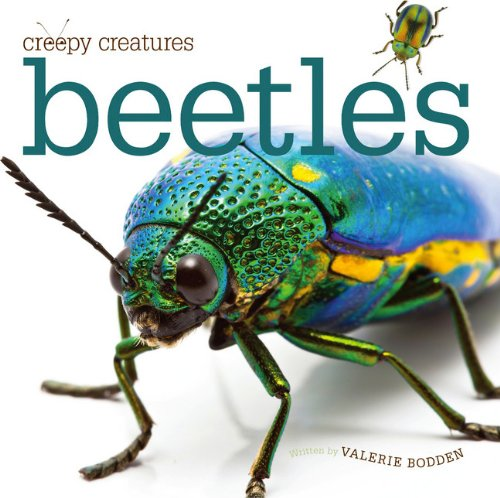 9780898127942: Creepy Creatures: Beetles