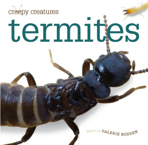 Creepy Creatures: Termites: Bodden, Valerie