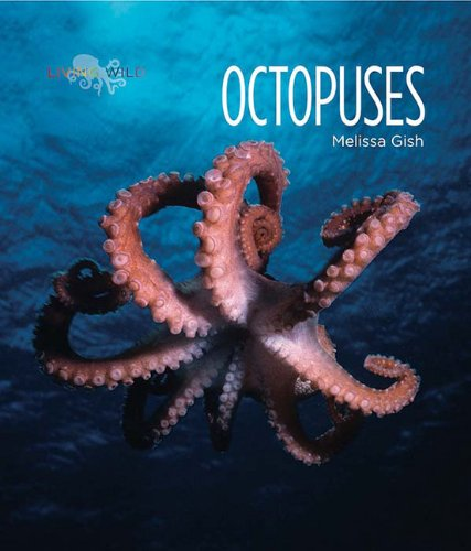 ISBN 9780898128420 product image for Living Wild: Octopuses | upcitemdb.com