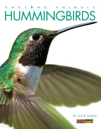 Hummingbirds (Amazing Animals (Creative Education Paperback)): Riggs, Kate
