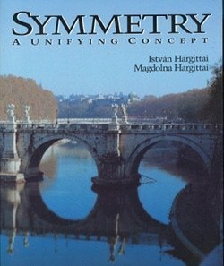 9780898155907: Symmetry: A Unifying Concept