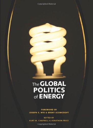 9780898434828: The Global Politics of Energy