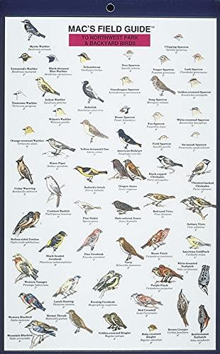 Northwest Park and Backyard Birds (Mac's Guides) (Laminated Card) (0898862469) by Craig MacGowan; David Sauskojus