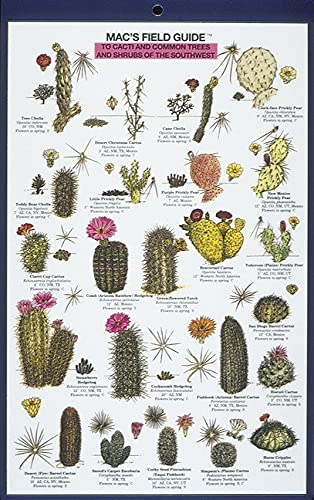 9780898862959: Mac's Field Guide to Cacti and Common Trees and Shrubs of the Southwest (Mac's Guides) (Mac's Guides (Paperback))
