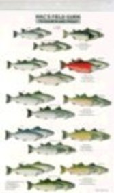 Mac's Field Guide to Trout and Salmon of North America (0898863929) by Craig MacGowan