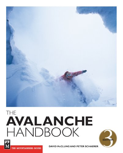 9780898868098: The Avalanche Handbook