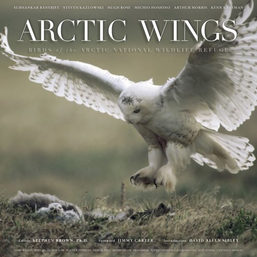 9780898869750: Arctic Wings: Birds of the Arctic National Wildlife Refuge with CD (Audio)