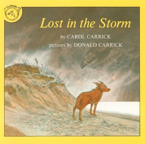 9780899194936: Lost in the Storm