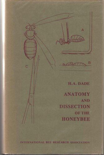 9780900149986: Anatomy and Dissection of the Honeybee