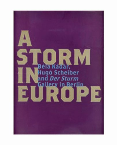 9780900157028: Storm in Europe