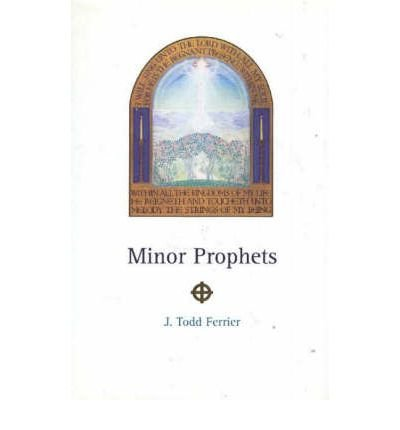 The Minor Prophets (Paperback): John Todd Ferrier