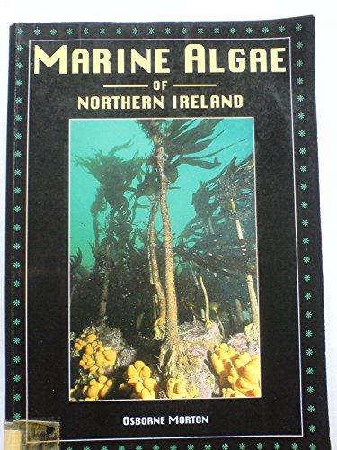 9780900761287: Marine algae of Northern Ireland (Ulster Museum publication)