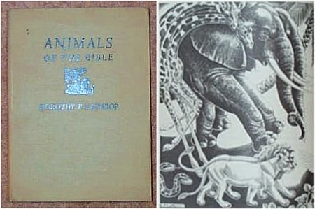 9780900818042: Animals of the Bible